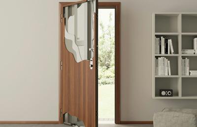 Дверь из стали