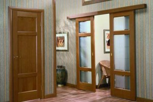 Развижная дверь из дерева и стекла
