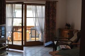Современная конструкция балконной двери с окном