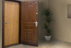 Пример двух дверей в доме